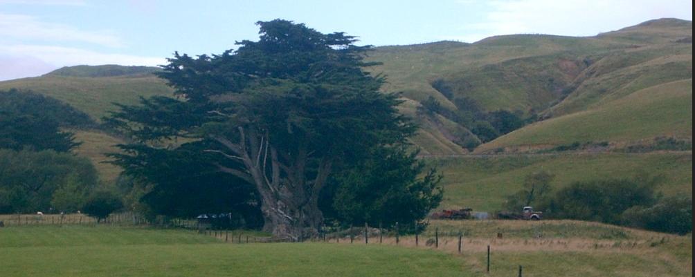 Cheviot, North Canterbury, New Zealand