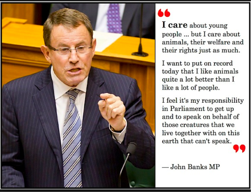 The dishonorable John Banks… shithead extraordinaire…… will get to know a lot of animals that are inmate primates when he is convicted of basically a charge of corruption.