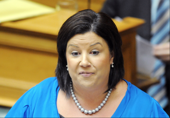 National Party Govt's Paula Bennett; No need for an inquiry. Pula doesn't seem to realise, in more ways than one, that you can put all the lipstick in the world on a pig but that doesn't change the fact that its a fucking pig.